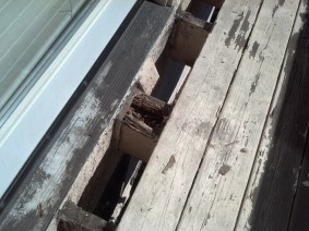 Old rotted deck boards need to be torn out...
