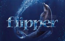 flipper el delfín aniversario