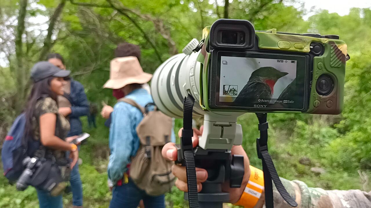"""Recorren """"Las Estacas"""" para fotografiar especies de flora y fauna"""