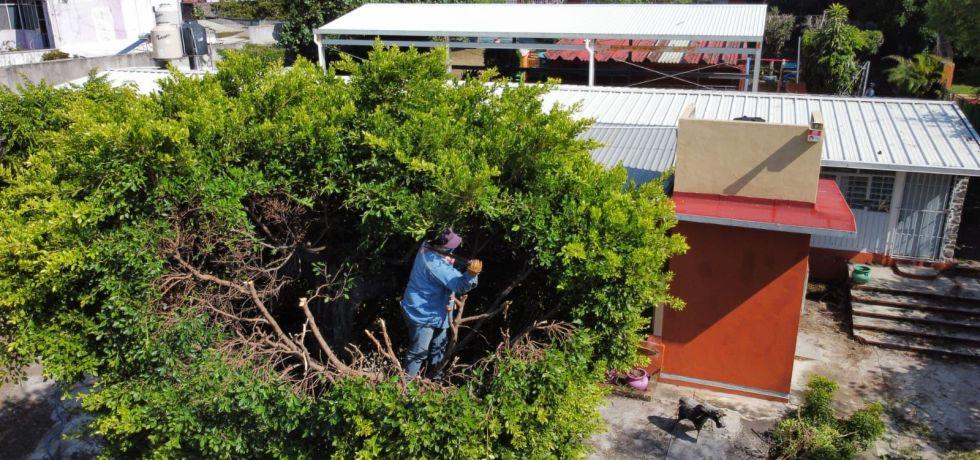Participa Gobierno de Jiutepec en mantenimiento de escuelas