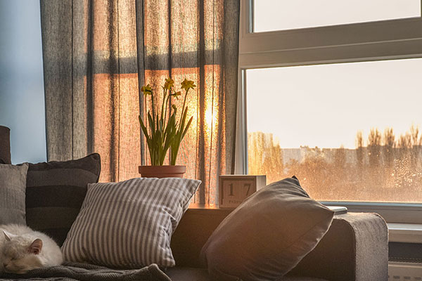 3M Window Film Energy Savings