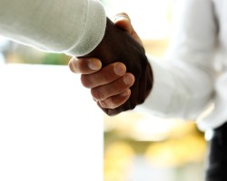 Close-up of businessmen shaking hands, Caucasian and African-American