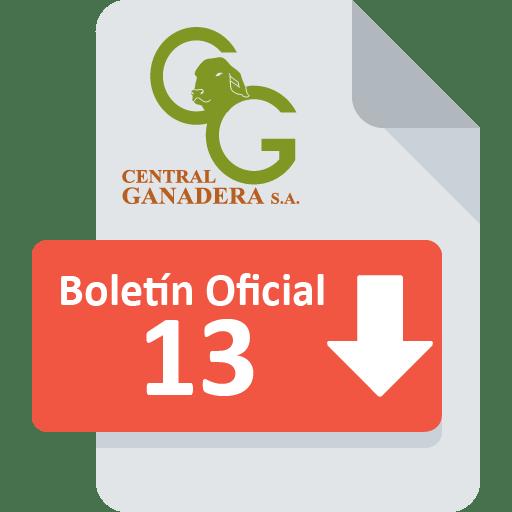 Boletín Oficial 13