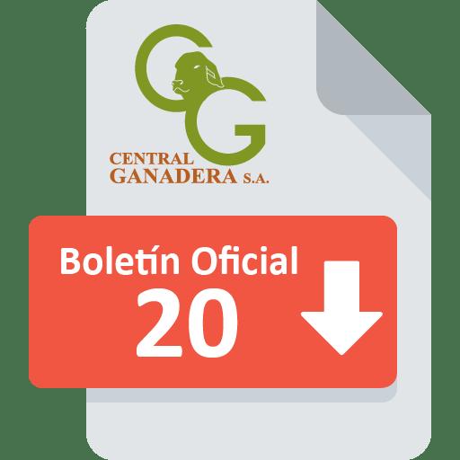 Boletín Oficial 20