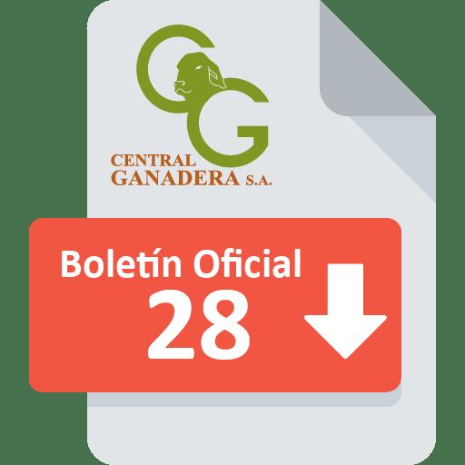 Boletín Oficial 28