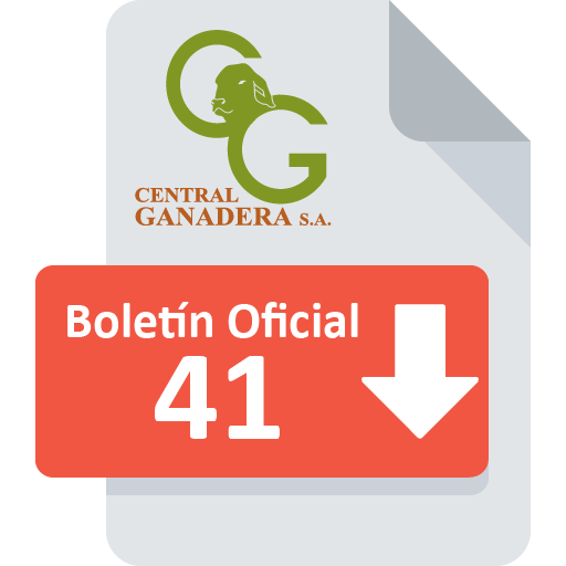 Boletín Oficial 41