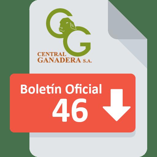 Boletín Oficial 46