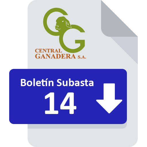 Resultados Subasta 14