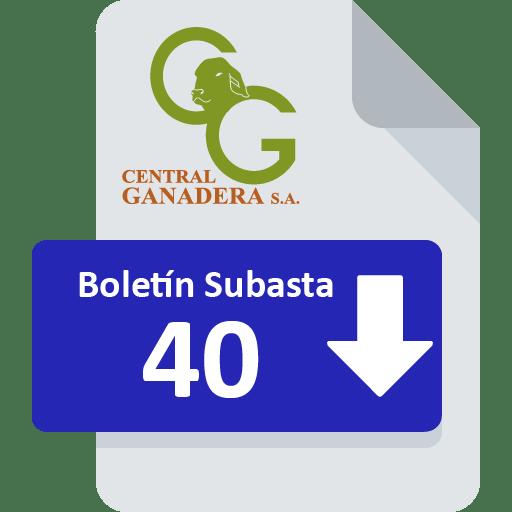 Resultados Subasta 40