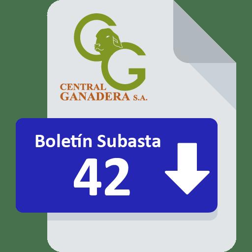 Resultados Subasta 42