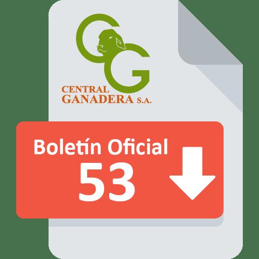 Boletín Oficial 53