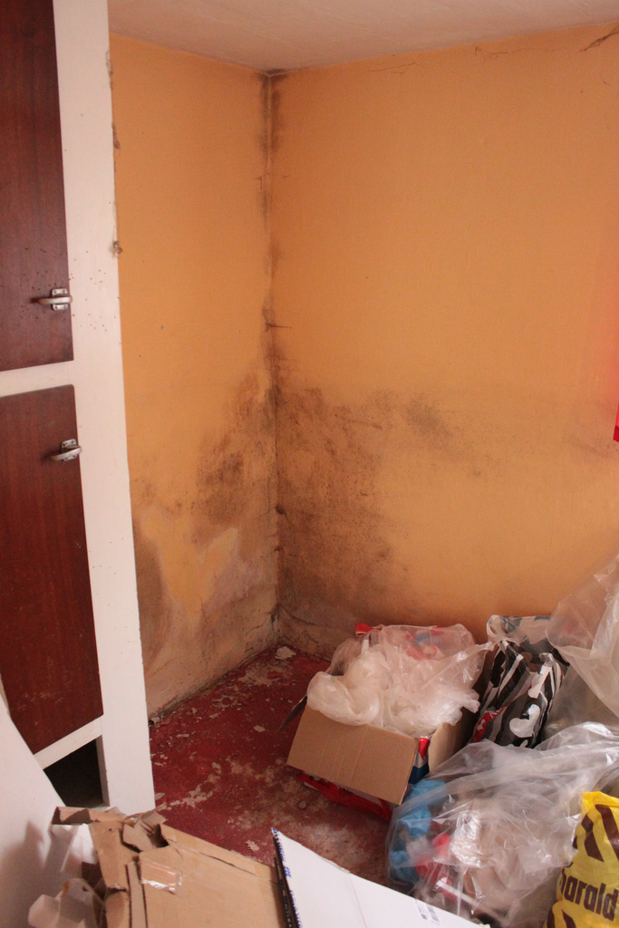 Tenants to sue over property conditions