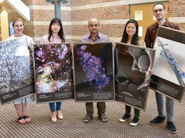 Chemistry students vie for artistic accolades at U of I's Beckman Institute