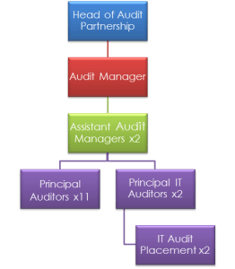 Audit team structure
