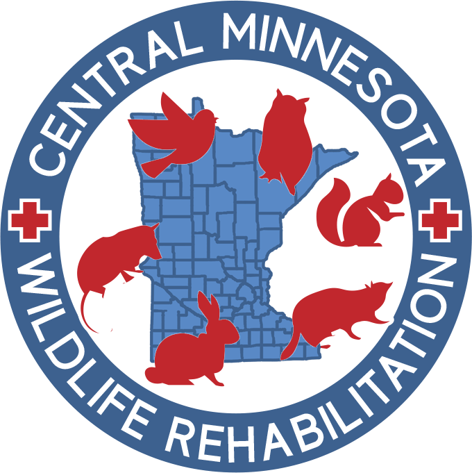 Central MN Wildlife Rehab
