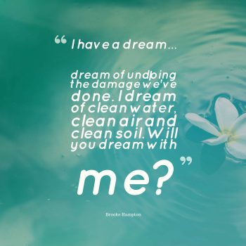 I have a dream... I dream of undoing the damage we've done. I dream of clean water, clean air and clean soil. Will you dream with me?