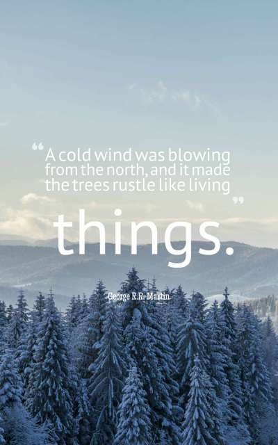 60 Beautiful Winter Quotes And Sayings With Images