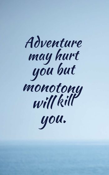 Adventure may hurt you but monotony will kill you.