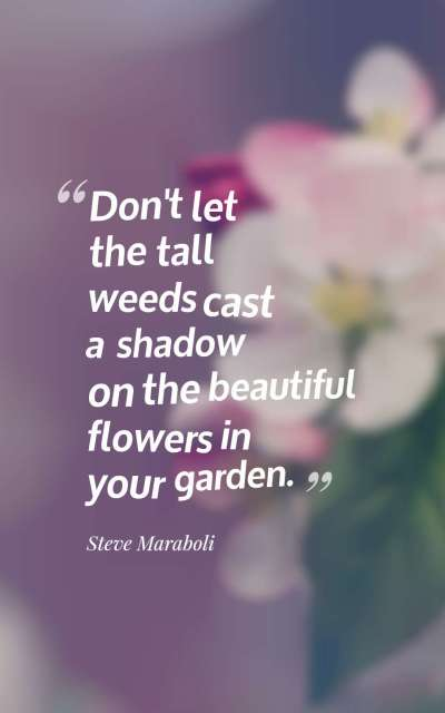 Don't let the tall weeds cast a shadow on the beautiful flowers in your garden.
