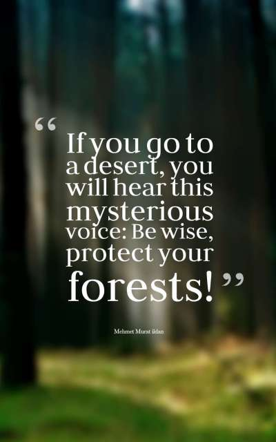 If you go to a desert, you will hear this mysterious voice Be wise, protect your forests!