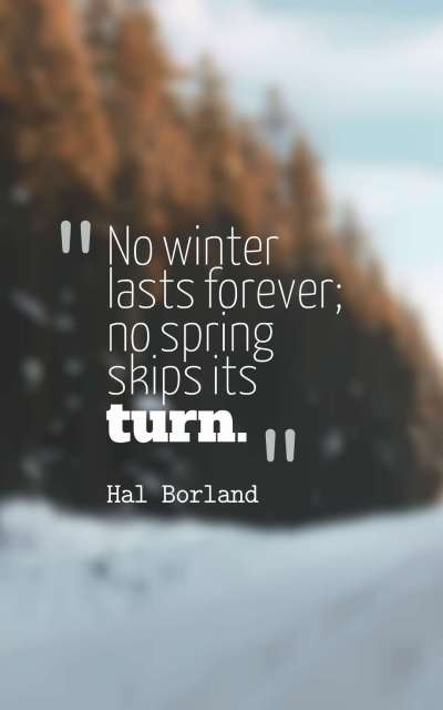 No winter lasts forever no spring skips its turn.