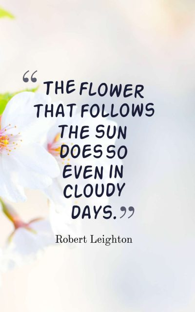 The flower that follows the sun does so even in cloudy days.