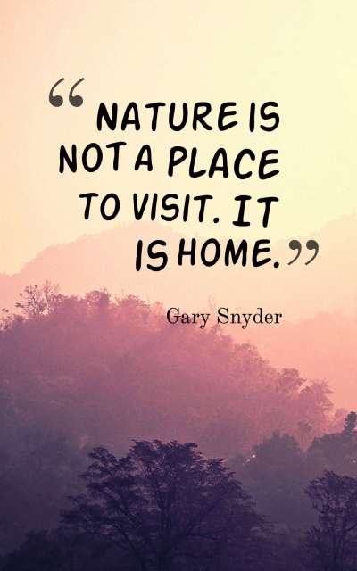 nature is not a place to visit it is home