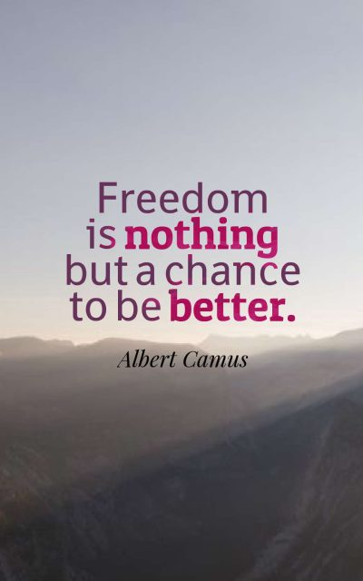 Freedom is nothing but a chance to be better.
