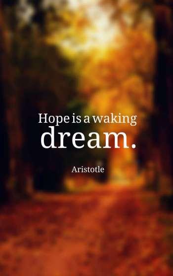 Hope is a waking dream.