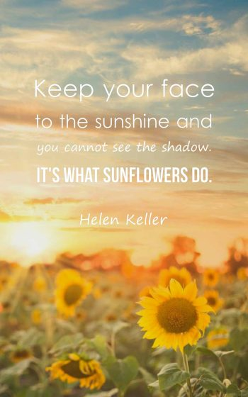 Beautiful Sunflower Quotes