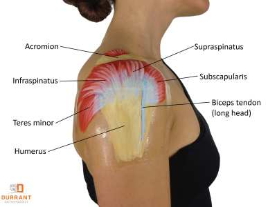 Rotator Cuff Injuries in Pennsylvania:  Causes, symptoms and treatment