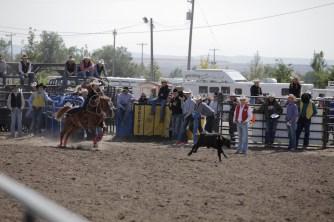 CWC_Rodeo_shortGo-62