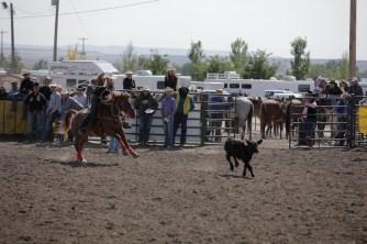 CWC_Rodeo_shortGo-65
