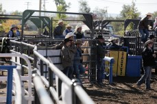 CWC_Rodeo_SLACK-2