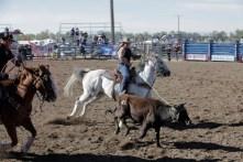 CWC_Rodeo_SLACK-71