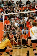 CWC_Volleyball_2014-321