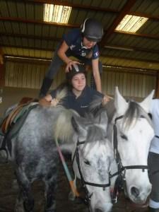 Ados de cheval 11-2016
