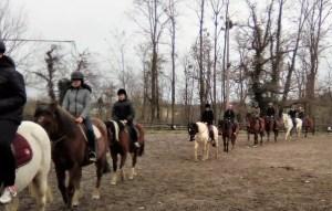 Découverte équitation