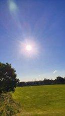 Lyn MB Stewart - Sun in the park 1