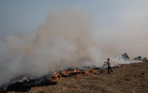 India Struggles to Breath