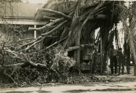 Hurricane Ida on Creative Commons (creativecommons.org)