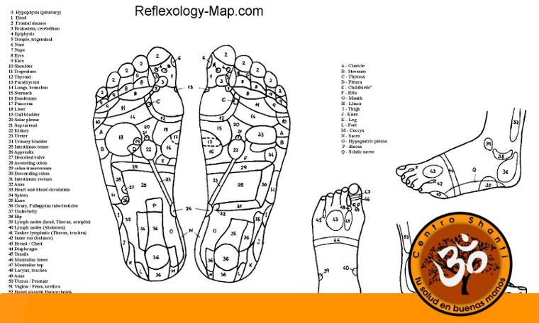 Zonas reflejas de los pies