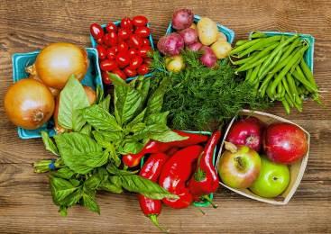 Chile anuncia apertura del mercado brasileño para productos orgánicos