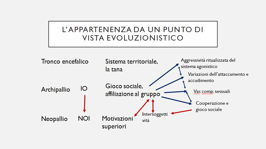 appartenenza 3