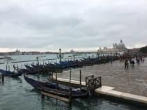 Muri e Dialogo. Venezia: incontro con OASIS