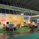CENTRO DE KINESIOLOGIA EN LA FERIA NATURA SALUD 2015