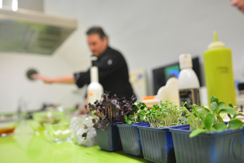 Cocinero en el Centro