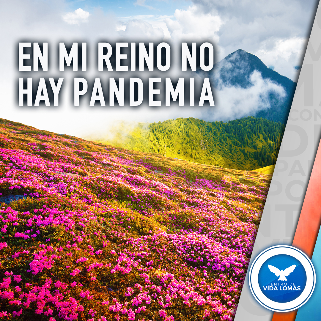 En mi Reino no hay pandemia.