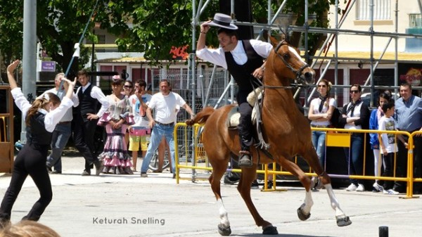 POISED, ALERT,SUPERBLY TRAINED - AND RIDDEN BY A MASTER!