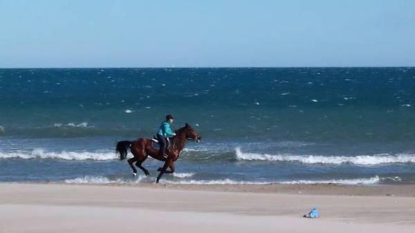 Excursión-a-caballo-en-la-Playa-de-Gandía